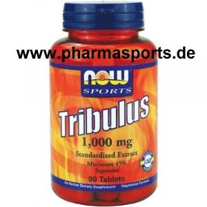 NOW Tribulus Terrestris Extrakt im Pharmasports Store