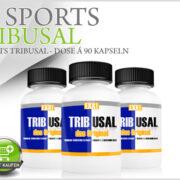 Tribulus Supplemente zum Muskelaufbau