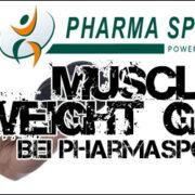 Muscle Weight Gainer zum Muskelaufbau