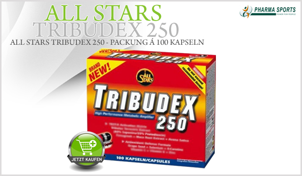 All Stars Tribudex 250