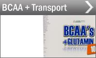 BCAA + Transport Supplemente bei Pharmasports