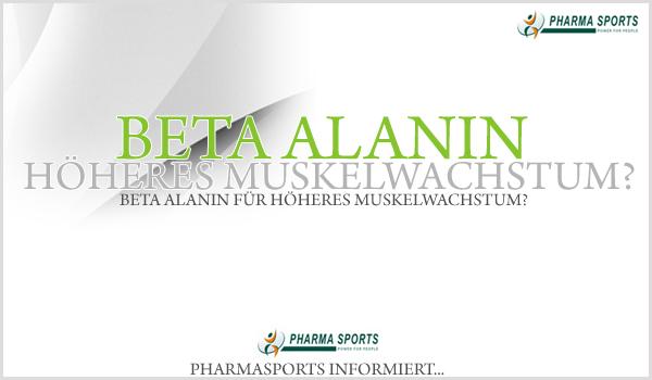 Beta Alanin für höheres Muskelwachstum?