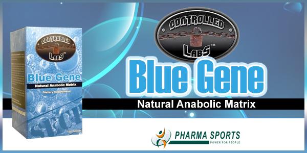 Controlled Labs Blue Gene für effektive Muskelmasse