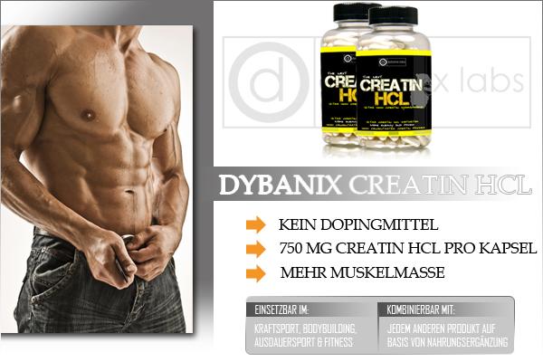 Dybanix Creatin HCL - Die Zukunft in der Sportnahrung