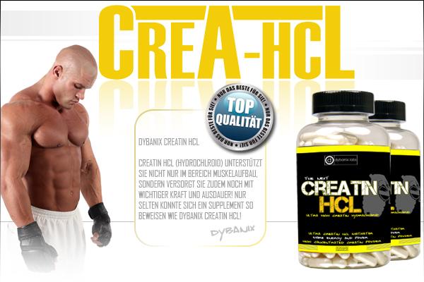 Jetzt auch bei Pharmasports - Dybanix Creatin HCL