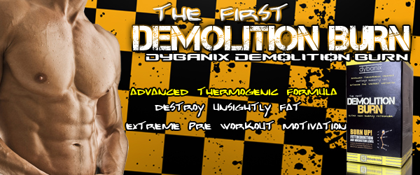 NEU! Dybanix Demolition Burn, High Quality Fatburner