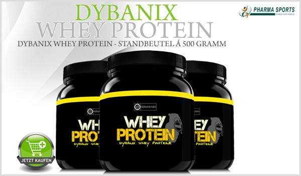 Dybanix Whey Protein in 6 Geschmackssorten bei Pharmasports