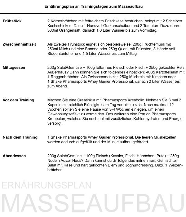 anabole diät ernährungsplan pdf