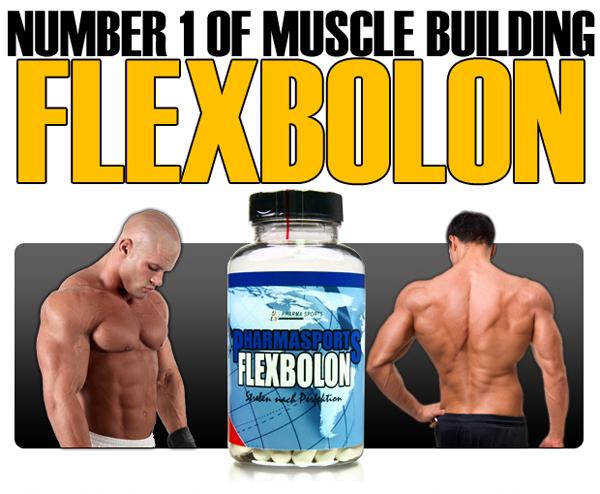 Flexbolon Number One Testosteron- und der xx-Hormon-Spiegel steigen stark an.