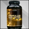 PointFit Tribulus 1200 Factor