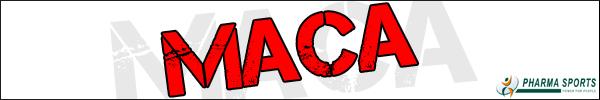 Informationen zum bekannten Maca