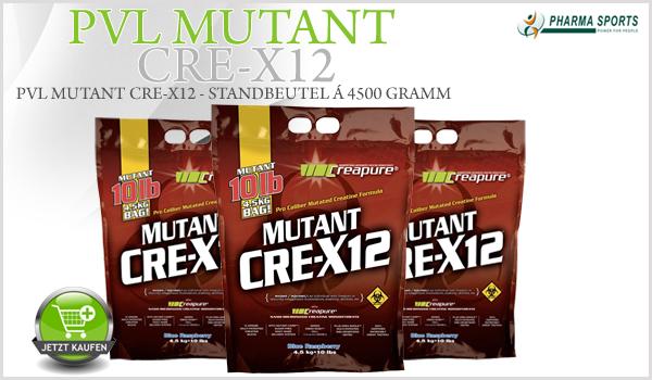PVL Mutant Cre-X12 - perfekte Zusammenstellung aus Kohlenhydraten und Creatin