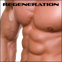Ratgeber - Regeneration