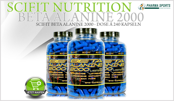 Scifit Beta Alanine 2000 - Dose á 240 Kapseln bei Pharmasports
