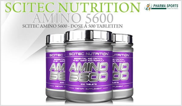 Scitec Amino 5600 bei Pharmasports
