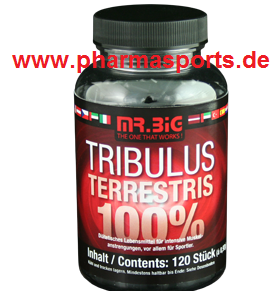 Mr Big Tribulus Terrestris Tribulus Supplement