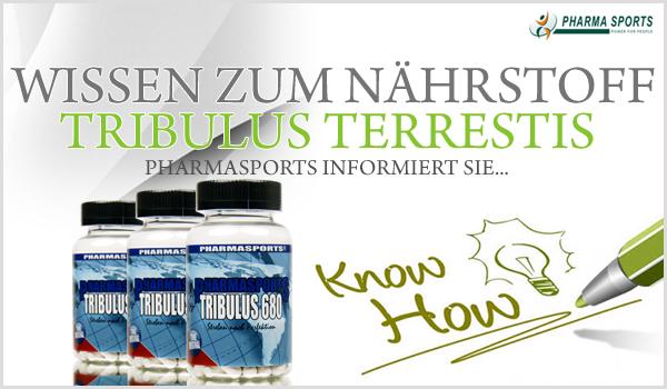Wissen zum Nährstoff Tribulus terrestris